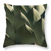 Blue Aloe Throw Pillow by Ellen Henneke