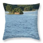 Blue And Green Throw Pillow