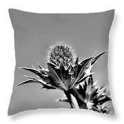 Blue And Green Bw Green Plant In Front Of A Blue Sky Throw Pillow