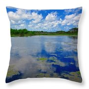 Blue And Green Cay Throw Pillow