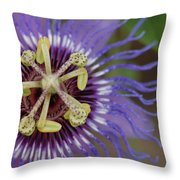 Blue And Purple Detail Throw Pillow