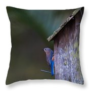 Blue And Rose Beige Plumage Throw Pillow