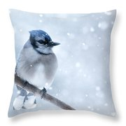 Blue And Snowy Throw Pillow