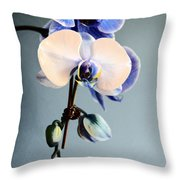Blue And White Orchids Throw Pillow