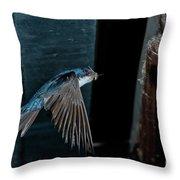 Blue And White Swallow Throw Pillow