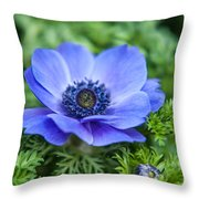 Blue Anemone. Flowers Of Holland Throw Pillow