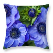 Blue Anemones. Flowers Of Holland Throw Pillow