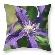 Blue Angel Clematis Close   # Throw Pillow