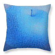 Blue Apple Throw Pillow