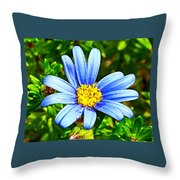 Blue Aster In Park Sierra Near Coarsegold-california   Throw Pillow