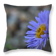 Blue Aster Throw Pillow
