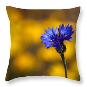 Blue Bachelor Button On Gold Throw Pillow