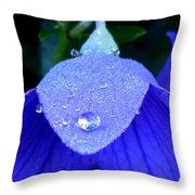 Blue Balance Throw Pillow