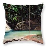 Blue Basin Throw Pillow