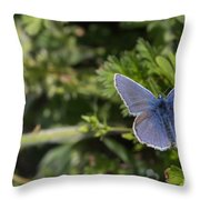 Blue Beauty Throw Pillow
