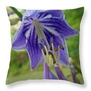 Blue Bell Flower Throw Pillow
