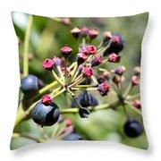 Blue Berry Throw Pillow