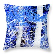 Blue Birch Trees Throw Pillow