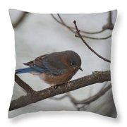 Blue Bird 201301 Throw Pillow