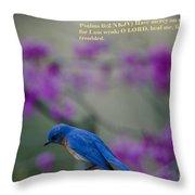 Blue Bird Praying Throw Pillow