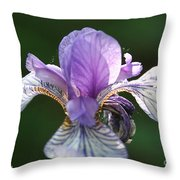 Blue Blooded Throw Pillow