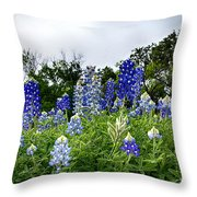 Blue Bonnet Carpet V9 Throw Pillow
