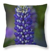Blue Bonnet Throw Pillow