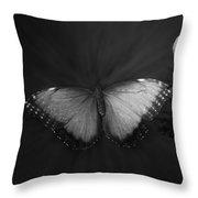 Blue Butterfly Ascending Bw Throw Pillow