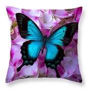 Blue Butterfly On Pink Hydrangea Throw Pillow