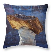 Blue Valley Hoodoo Throw Pillow