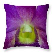 Blue Charm X Aridang Blue Orchid - 2 Throw Pillow