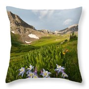 Handie's Peak And Blue Columbine On A Summer Morning Throw Pillow by Cascade Colors