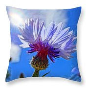 Blue Cornflower With Blue Sky Throw Pillow