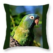 Blue-crowned Parakeet Throw Pillow by Ira Runyan