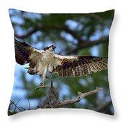Blue Cypress Landing Throw Pillow