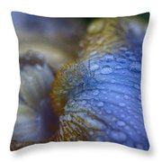 Blue Danube  Throw Pillow