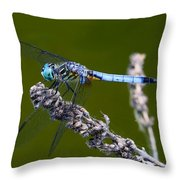 Blue Darter Throw Pillow