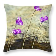 Blue Dicks Sway In A Breeze By Lower Palm Canyon Trail In Indian Canyons Near Palm Springs-california Throw Pillow