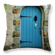 Blue Door In Baltimore Throw Pillow