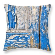 Blue Doors Throw Pillow
