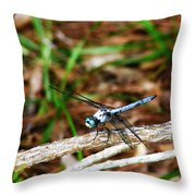 Blue Dragonfly Beauty Throw Pillow by Ella Char