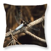 Blue Dragonfly Throw Pillow