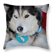 Blue Eye Brown Eye Throw Pillow