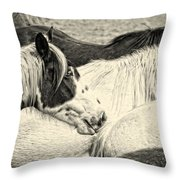 Blue Eyed Beauty Two Throw Pillow
