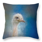 Blue Eyed Beauty - White Ostrich - Wildlife Throw Pillow