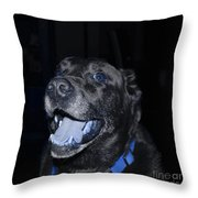 Blue Eyed Lab Smiling For The Camera Throw Pillow