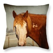 Blue Eyed Paint Throw Pillow