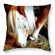 Blue-eyes Mini Throw Pillow
