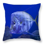 Blue Fish   #4990 Throw Pillow