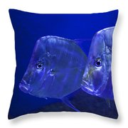 Blue Fish   #4991 Throw Pillow